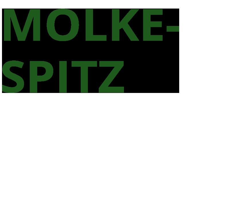 Bäckerei Hütter Molkespitz
